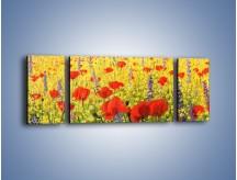 Obraz na płótnie – Cała łąka maków – trzyczęściowy GR480W5