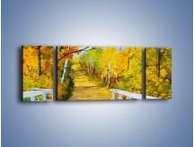 Obraz na płótnie – Alejką w słoneczna jesień – trzyczęściowy GR540W5