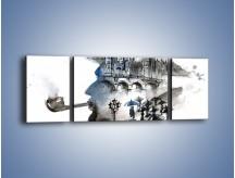 Obraz na płótnie – Fajka i parasole – trzyczęściowy GR551W5