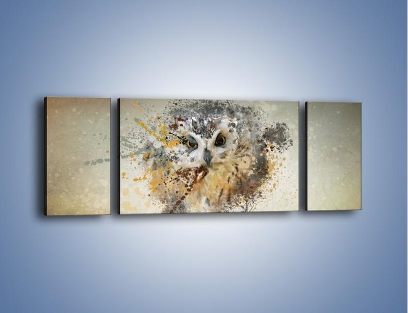 Obraz na płótnie – Czujne spojrzenie sowy – trzyczęściowy GR592W5