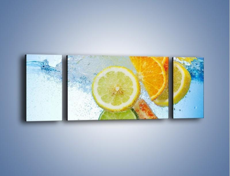 Obraz na płótnie – Zatopione plastry owoców – trzyczęściowy JN057W5