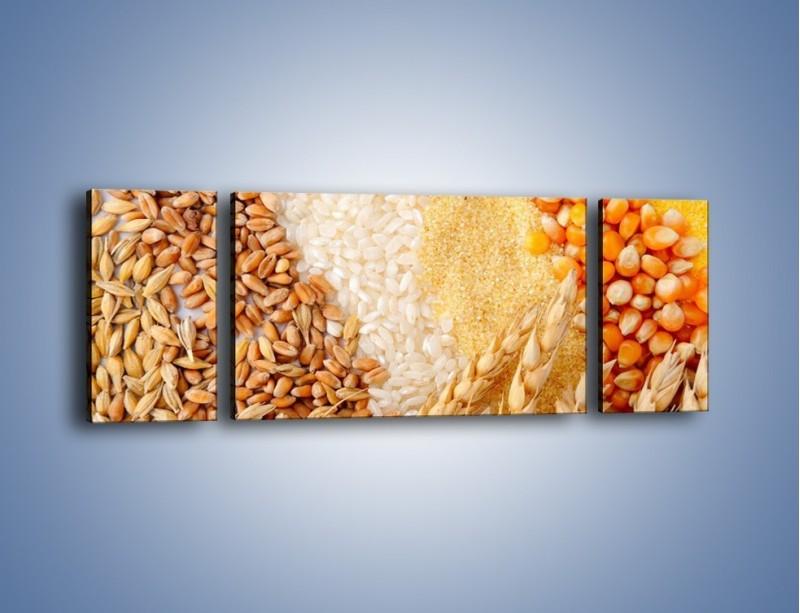 Obraz na płótnie – Ziarna pszenno-zbożowe – trzyczęściowy JN207W5