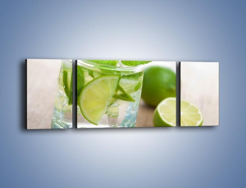Obraz na płótnie – Limonkowy napój – trzyczęściowy JN262W5