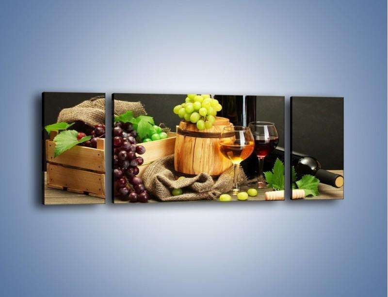 Obraz na płótnie – Wytrawne smaki wina – trzyczęściowy JN289W5