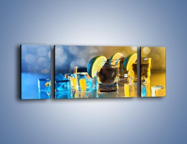 Obraz na płótnie – Zimne shoty z limonką – trzyczęściowy JN294W5