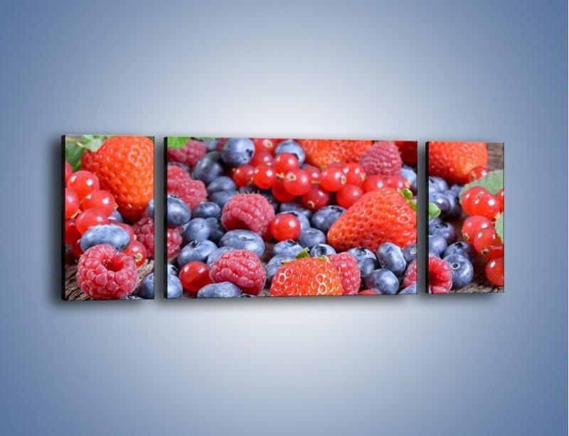 Obraz na płótnie – Owoce z działki – trzyczęściowy JN422W5