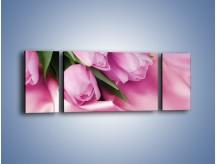 Obraz na płótnie – Atłas wśród tulipanów – trzyczęściowy K152W5