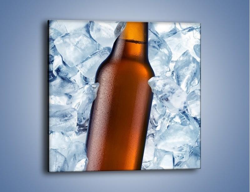 Obraz na płótnie – Ciemne piwo w butelce – jednoczęściowy kwadratowy JN048