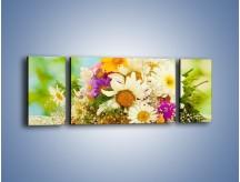 Obraz na płótnie – Bukiecik dla małej ogrodniczki – trzyczęściowy K369W5