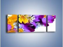 Obraz na płótnie – Ciepłe kolory w kwiatach – trzyczęściowy K442W5