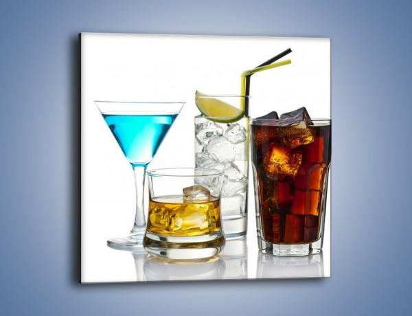 Obraz na płótnie – Kolorowe drinki – jednoczęściowy kwadratowy JN054