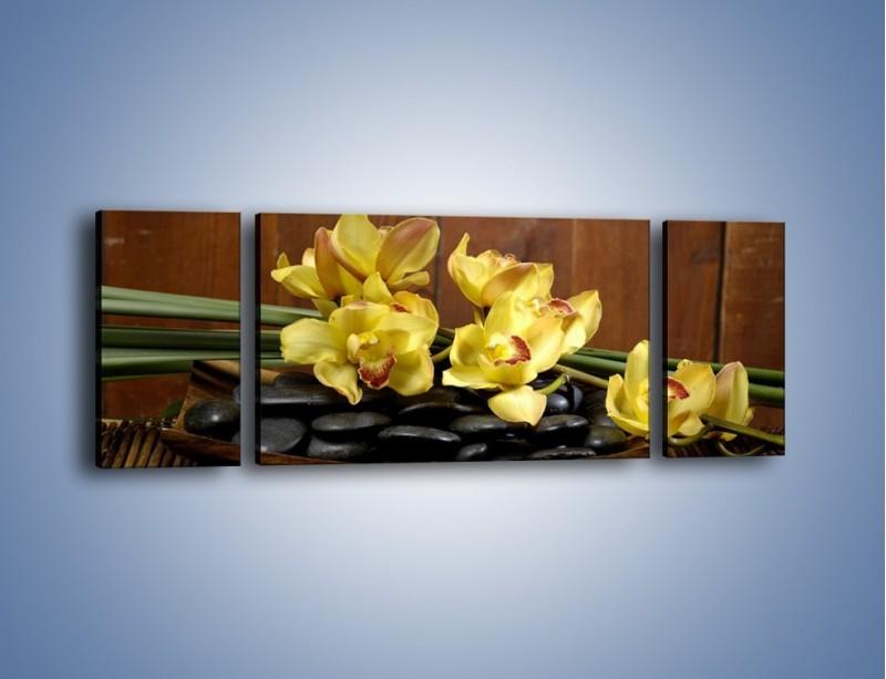 Obraz na płótnie – Kwiaty na drewnianym naczyniu – trzyczęściowy K575W5