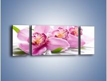 Obraz na płótnie – Biały kwiatowy stół – trzyczęściowy K688W5