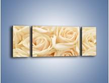 Obraz na płótnie – Bukiet herbacianych róż – trzyczęściowy K710W5