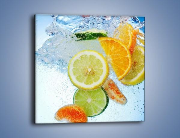 Obraz na płótnie – Zatopione plastry owoców – jednoczęściowy kwadratowy JN057