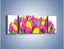 Obraz na płótnie – Bukiet fioletowo-żółtych tulipanów – trzyczęściowy K778W5