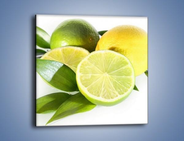 Obraz na płótnie – Mix cytrynowo-limonkowy – jednoczęściowy kwadratowy JN058