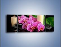 Obraz na płótnie – Ciepło ogień i kwiaty – trzyczęściowy K881W5