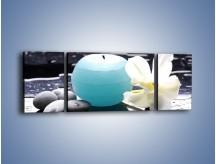 Obraz na płótnie – Błękit świecy z kwiatem – trzyczęściowy K887W5