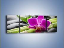 Obraz na płótnie – Bambusowe dodatki z przodu – trzyczęściowy K954W5