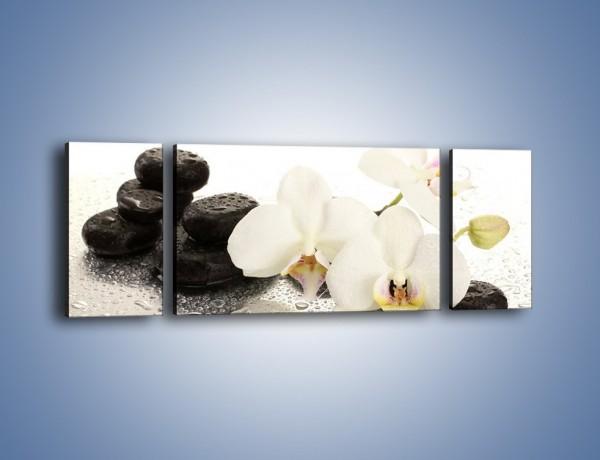 Obraz na płótnie – Mokre kwiaty i kamienie – trzyczęściowy K986W5