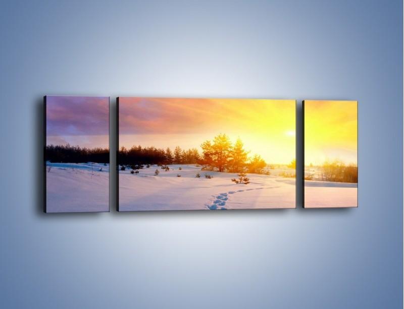 Obraz na płótnie – Ślady na śnieżnym puchu – trzyczęściowy KN1015W5