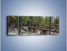 Obraz na płótnie – Bezpieczne przejście na druga stronę – trzyczęściowy KN1060W5