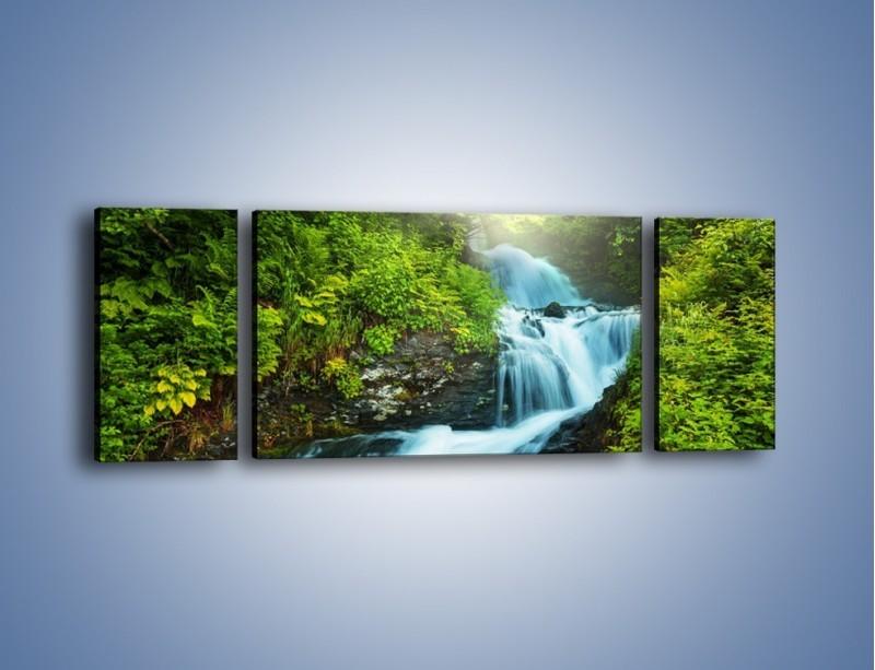 Obraz na płótnie – Spływ wodny i zieleń – trzyczęściowy KN1069W5