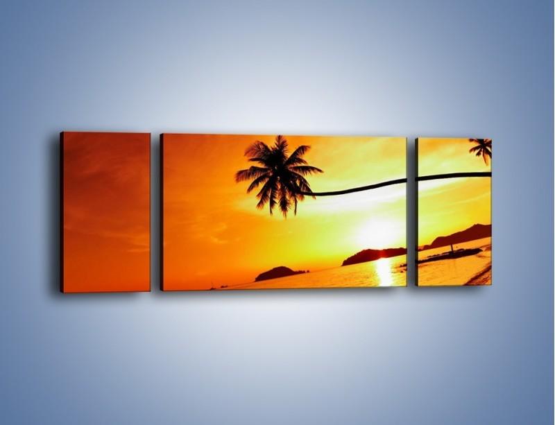 Obraz na płótnie – Palma o zachodzie słońca – trzyczęściowy KN1077W5