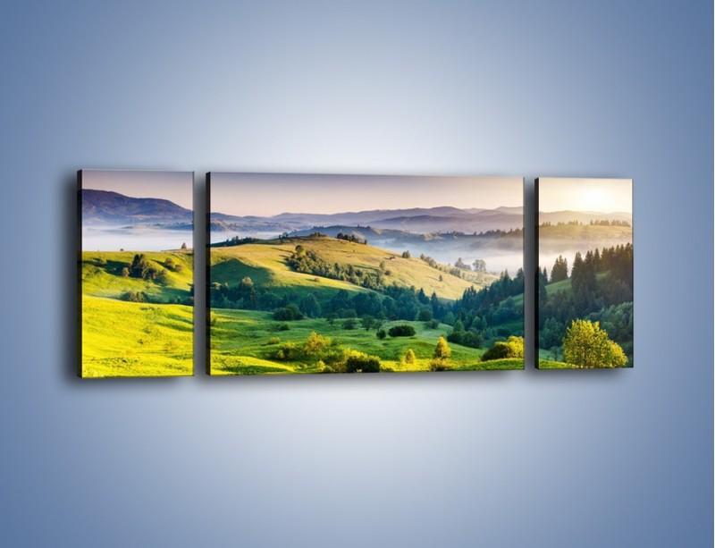 Obraz na płótnie – Tylko zieleń i góry – trzyczęściowy KN1084W5