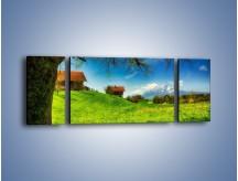 Obraz na płótnie – Chatki na polanie – trzyczęściowy KN1085AW5