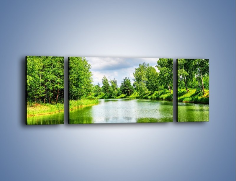 Obraz na płótnie – Spokojna woda i las – trzyczęściowy KN1086W5