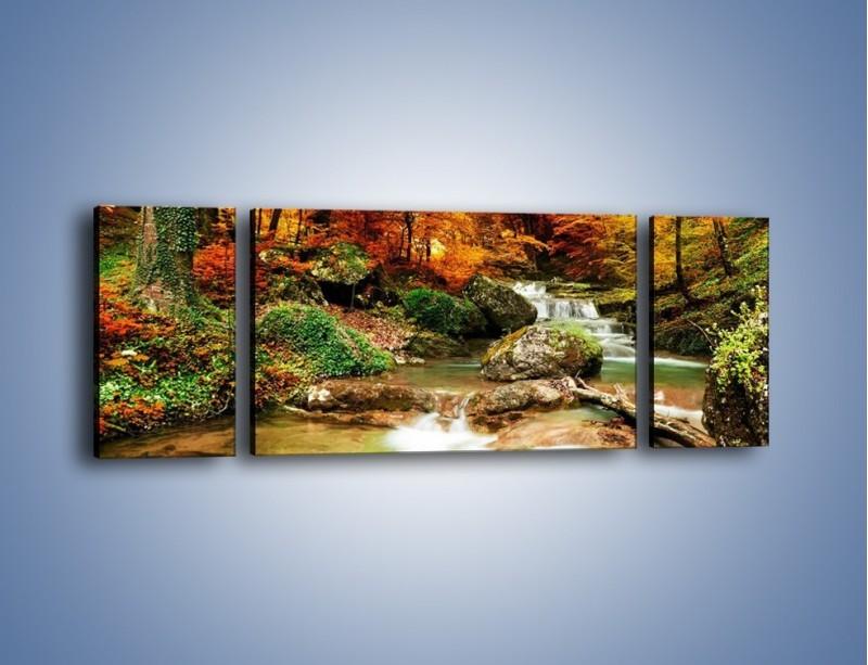 Obraz na płótnie – Jesienne kolory w lesie – trzyczęściowy KN1094AW5