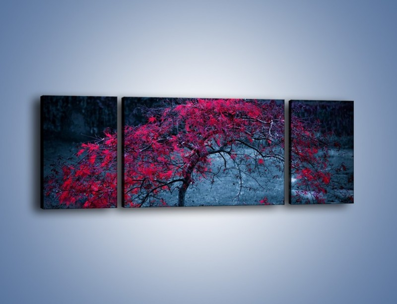 Obraz na płótnie – Czerwone płaczące drzewo – trzyczęściowy KN1101AW5