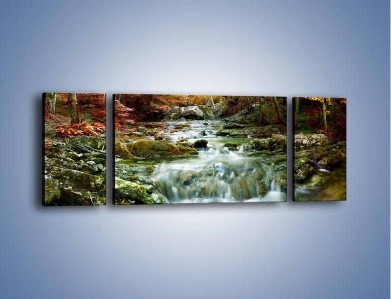 Obraz na płótnie – Wilgoć w lesie – trzyczęściowy KN1118AW5
