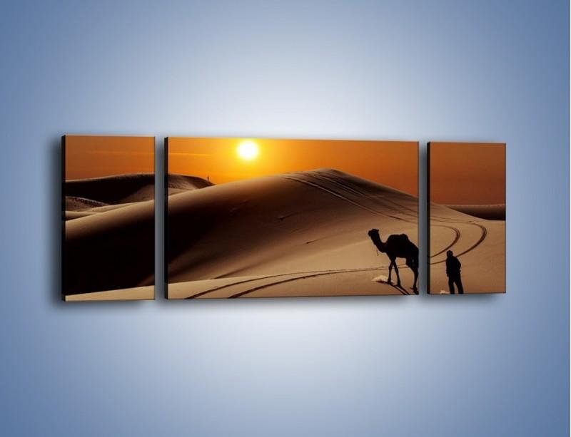 Obraz na płótnie – Człowiek wielbłąd i wydmy – trzyczęściowy KN1134AW5