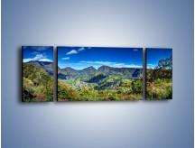 Obraz na płótnie – Cały góry pokryte zielenią – trzyczęściowy KN1140AW5