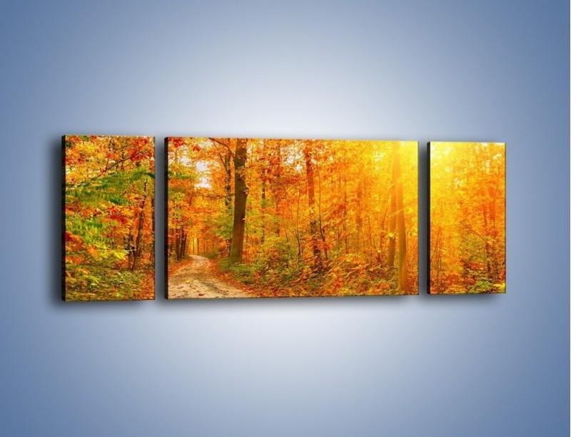 Obraz na płótnie – Leśną drużką jesienią – trzyczęściowy KN1163AW5