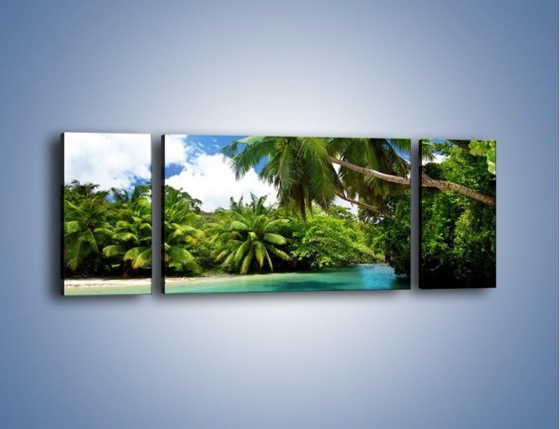 Obraz na płótnie – Rozłożone palmy i woda – trzyczęściowy KN1168AW5