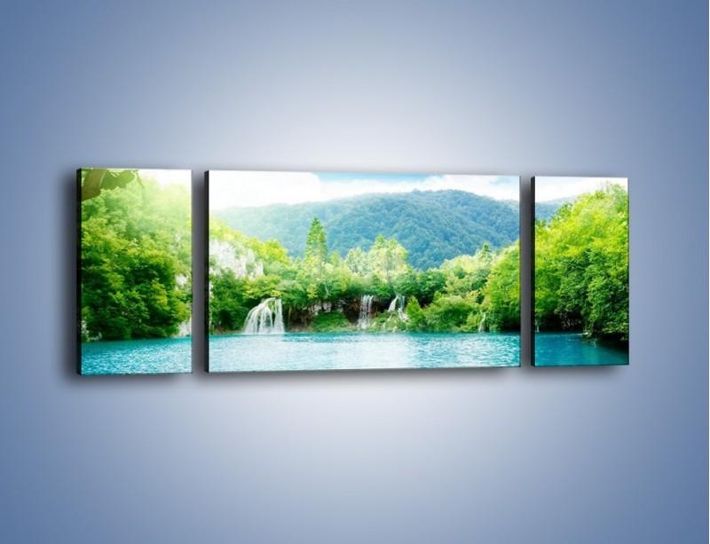 Obraz na płótnie – Kąpiel w chłodnej wodzie – trzyczęściowy KN1200AW5
