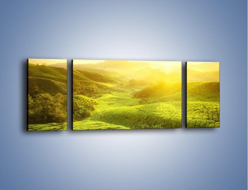 Obraz na płótnie – Zieleń w dolinie – trzyczęściowy KN1204AW5