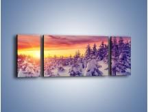 Obraz na płótnie – Choinki w śnieżnej szacie – trzyczęściowy KN1220AW5