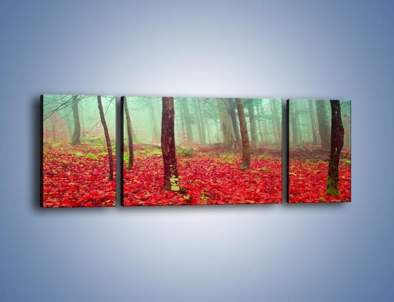Obraz na płótnie – Drzewka na czerwonym dywanie – trzyczęściowy KN1222AW5