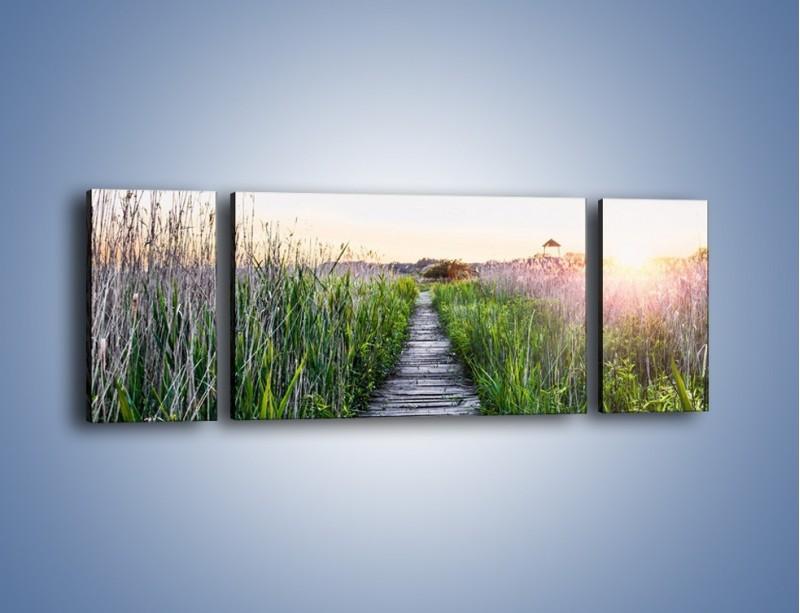 Obraz na płótnie – Kładka wśród mokradeł – trzyczęściowy KN1248AW5