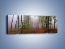Obraz na płótnie – Budzący się lasek – trzyczęściowy KN1285AW5