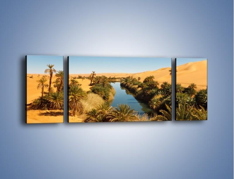 Obraz na płótnie – Woda woda na pustyni – trzyczęściowy KN1294AW5