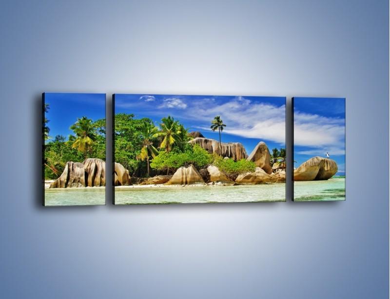 Obraz na płótnie – Tropiki i ich wysokości – trzyczęściowy KN1306AW5