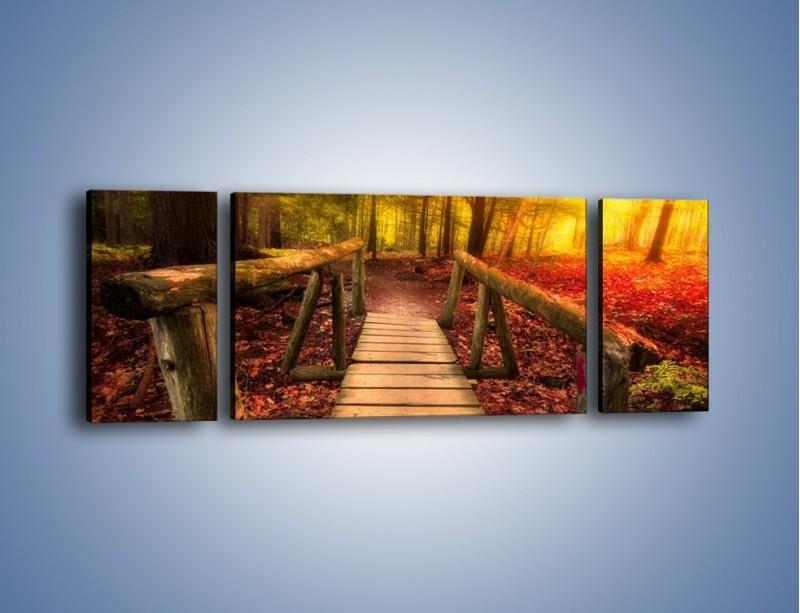 Obraz na płótnie – Krótkie przejście przez las – trzyczęściowy KN1330AW5