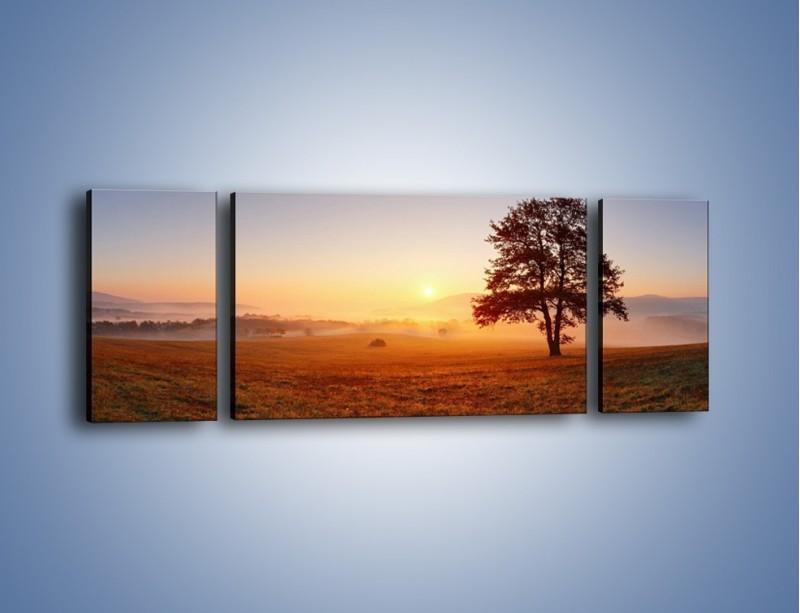 Obraz na płótnie – Krajobraz utopiony we mgle – trzyczęściowy KN1331AW5