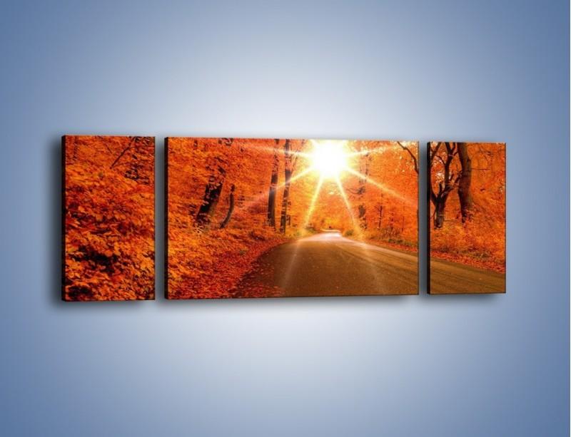 Obraz na płótnie – Droga pełna słońca – trzyczęściowy KN160W5